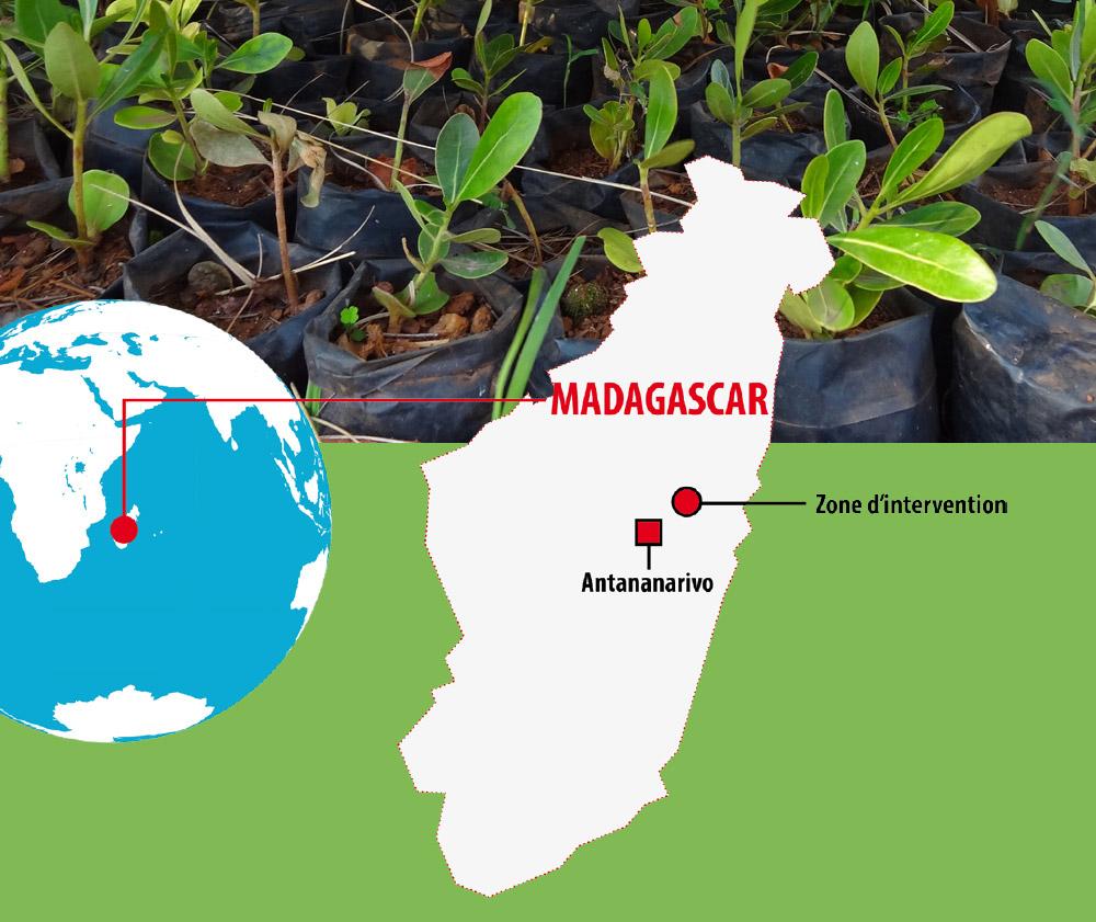 Madagascar des forêts pour le climat